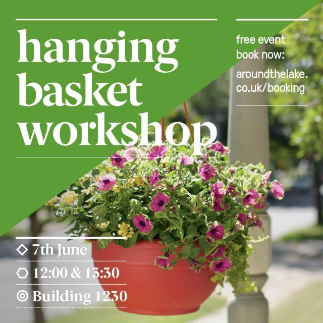 Hanging-Basket-instagram-V1