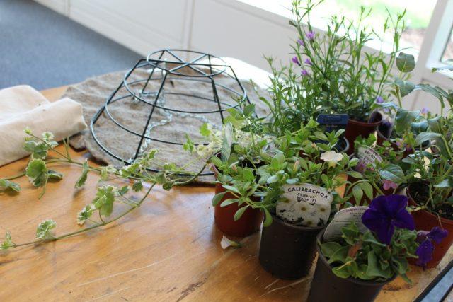 Hanging Basket Workshop (17)